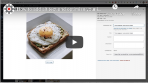 optimising your images and adding alt text in wordpress